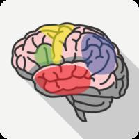 brain_area_speech_disorder